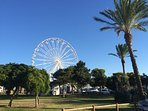 The new big wheel near the harbour giving you the chance to enjoy the stunning views.