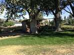 Huge yard, fully equipped with wood for fire pit, gas grill & Sports equipment storage