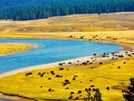 Minutes away - The magnificent Snake River offering World Class fishing & other river activities!