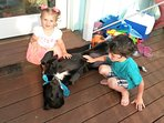 Kids love owners rescue mutts!