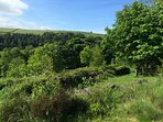 On the walk to Jack Bridge - Heptonstall side