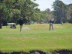 Golf Course, Grassland