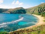 Beaches like world famous Hanauma Bay are a short drive away!