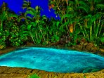 Beautiful tropical oasis