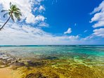 Steps to some of the most famous south shore surf spots! Great snorkeling areas too!