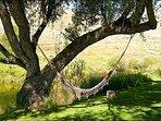Relax in the Creekside Hammock