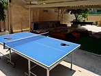 tennis table game