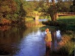 Fishing on the River Eden