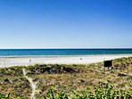 Clearwater Beach has beautiful dunes and white sands.