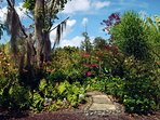 Beautiful tropical landscaping