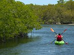 Kayaking tours at John Pennekamp State Park