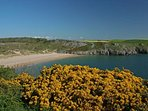 National Trust owned Barafundle Bay - award winning beach in multiple categories