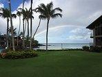 Rainbow over Honokeana Cove!