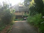 Bachelor Flat in the Heart of Gorgeous Leafy Kloof
