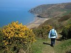 Get active and explore the coastal paths linking all the beaches. This sandy cove is Penbryn.
