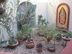The Virgin of Guadalupe keeps vigil over the cactus garden at the compound entrance.
