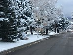 Our Street in Winter