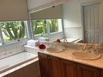 master bedroom's ensuite : bath, shower and toilet