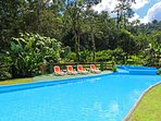Welcome to Arenal Rain Forest Estate; a three bedroom house with a/c and a pool!
