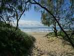 Wandana Beach House - Mount Coolum  - Beachfront - Roof terrace - Views