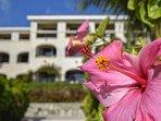 Xaman Ha 7103 Playa del Carmen Exterior