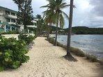Take a walk down the sand to IGGIE'S Beach Bar and Bolongo Beach Resort