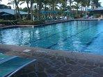 Huge Olympic size pool