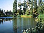 Across the street Galouste Gulbenkian Museum & Garden with art, concerts, cafés and lake with ducks