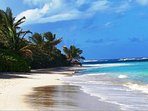 Culebra, Short ferry ride from condo. One of 10 most beautiful beaches in the world.