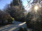 Frosty Gardens November 2016