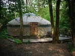 Camouflaged to blend seamlessly into the woodland setting