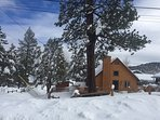 Luxe Big Bear Cabin +Loft in the pines!