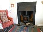New wood burning stove 2016