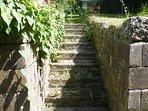 Steps to rear garden