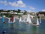 Plenty of sailing on the estuary.