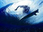 Surfing Avellanas