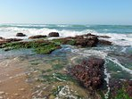 Fresh sea water washes over the rocks.  At low tide rock pools reveal their secrets