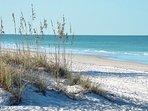 Beautiful sugary white sandy beach!