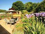 Beautifully kept garden & terrace.