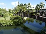 Bridge from pool area to private island teeming with tropical flora and fauna