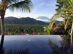 pool, palmforest, agung
