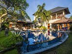 Large swimming pool and a Balinese cozy gazebo