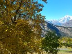 vista Monte Bianco in estate dal giardino