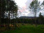 Elmore Mountain views