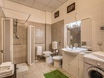 our main accessible bathroom with roll-in shower and washing machine