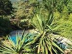 3800m² de restanques et de plantes méditerranéennes.