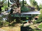 Diverses photos du chemin privé et des restanques de la Villa L'occitane.