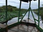 River boat ride on Rio Jungle