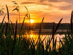 Sonnenauf- und -untergänge sind besonders schön! // Sunrise and sunsets are particularly beautiful!