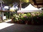Ampio appartamento al I piano in villa a 450 mt dal mare - Lacona - Isola d'Elba